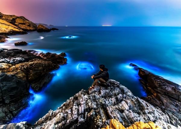馬祖藍眼淚近日爆量,美照也在網路瘋傳,但這其實是一個大海「掉淚」的警訊,意味海洋環境處於比較不健康的狀況。(資料照,連江縣政府提供)