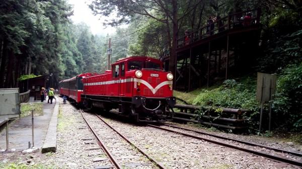 阿里山森林鐵路車票可免費兌換日本姊妹鐵路車票。(林務局提供)