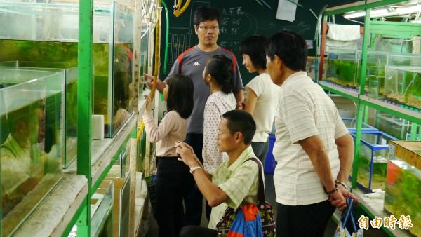 裕民國小利用假日舉辦研習,教大家認識青鏘魚。(記者翁聿煌攝)
