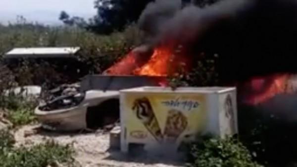 民眾目擊狗群遭焚燒而死。(圖取自The Times of Israel)