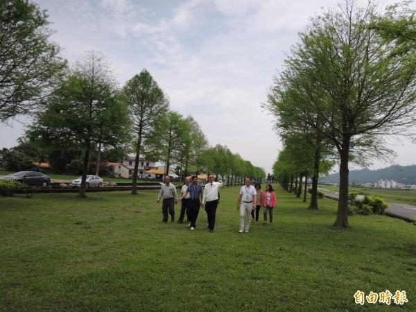 三星鄉安農溪落羽松步道,是近來爆紅的落羽松祕境。(記者江志雄攝)
