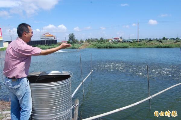 顏榮宏表示,水產養殖以往投料餵養方式,比較浪費人力及飼料。(記者蔡文居攝)