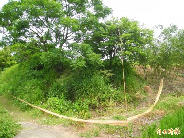 鄧婦被發現陳屍農田旁的樹下水溝。(記者許展溢攝)