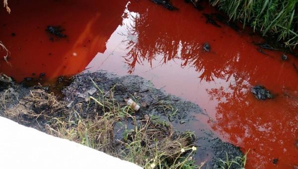 屏東市崁仔頂大排溪水都變成紅色,相當可怕。(縣議員蔣月惠提供)