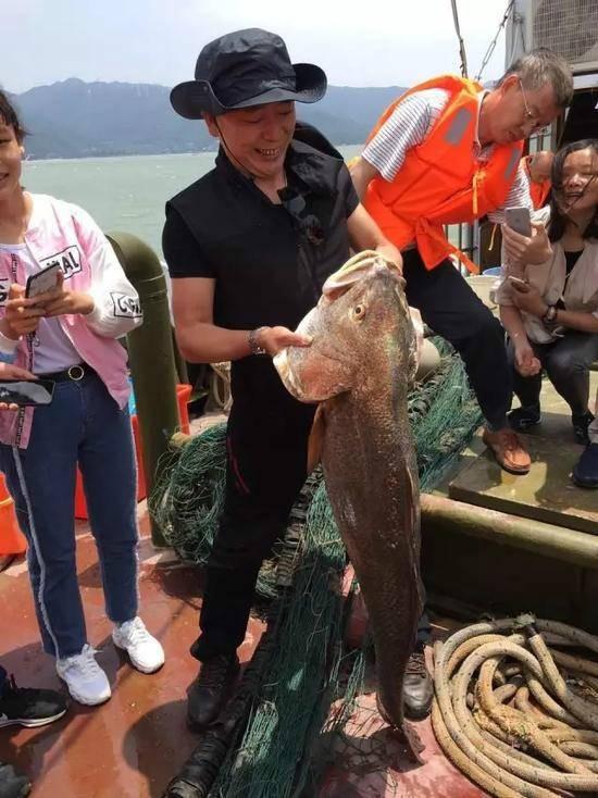 中國有艘福建籍漁船4日於閩粵交界海域捕獲了一條61公斤重的極危物種「黃唇魚」,賣得了347萬人民幣(約新台幣1538萬元)。(圖擷取自微博)