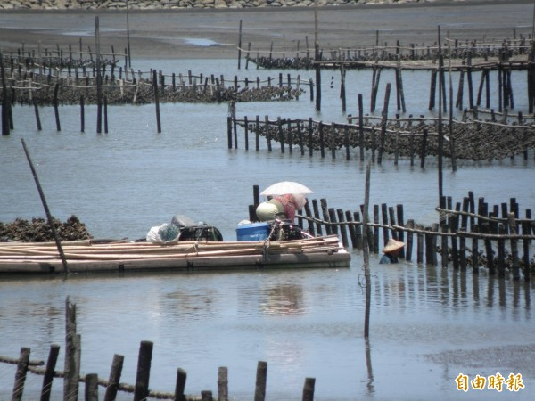 為防止夏天在海上作業被曬傷,養蚵漁民防曬配備全派上用場。(記者陳燦坤攝)