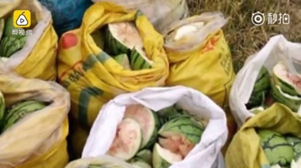 中國江西近日傳出有4名國小學童竟因一時無聊,跑到鄰近的西瓜田搞破壞,前後共有4000多公斤的西瓜慘遭毒手。(圖擷自梨視頻)