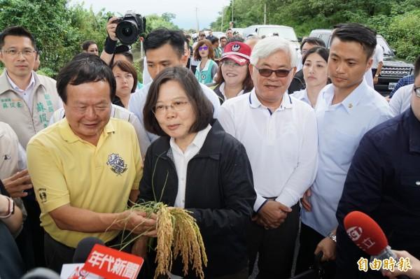 農民手泡水後發芽的稻穗向總統蔡英文陳情。(記者詹士弘攝)