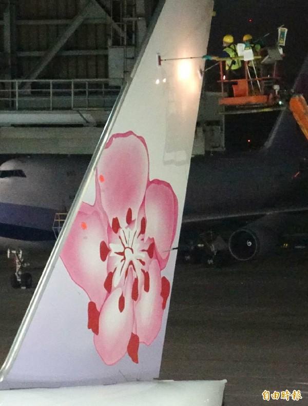 華夏公司由法國引進環保省水的「ECOSHINE」高科技飛機清洗技術,讓飛機「洗澡」時間縮短,節省人力外,相較於以往傳統「水洗」方式,讓機隊飛機更為亮麗。(記者姚介修攝)