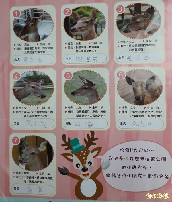 小鹿家族命名活動開跑,小朋友發揮童心,用明星來幫小鹿取名字。(記者劉曉欣攝)