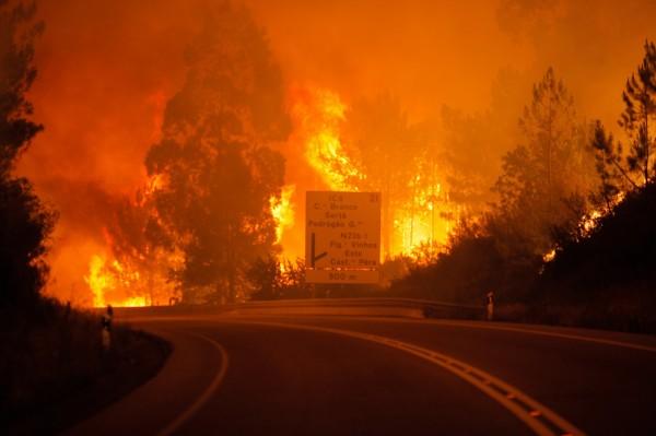 葡萄牙森林大火,目前24死20傷。(歐新社)