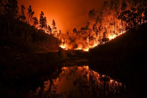 大佩德羅岡爆發森林大火後,火勢在幾個火線迅速蔓延。(法新社)