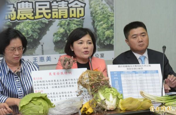 國民黨立委王惠美、張麗善與顏寬恒等21日召開「打開天花板保障農產品樓地板為農民請命」記者會。(記者張嘉明攝)