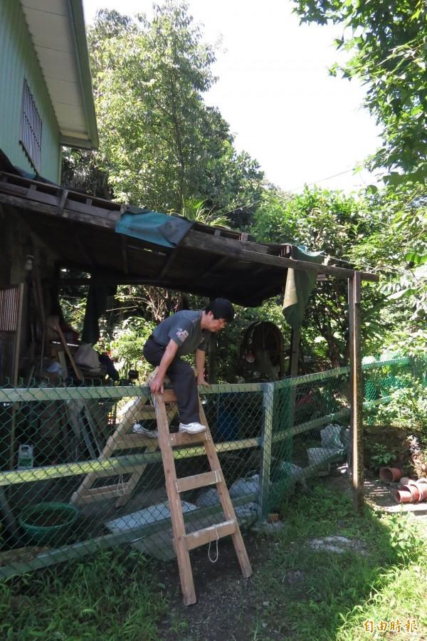 家住基隆深澳坑路的賴欽木表示,他的住家在今年3月被地主用鐵絲網團團包圍,讓他回家得用工作椅攀爬。(記者俞肇福攝)