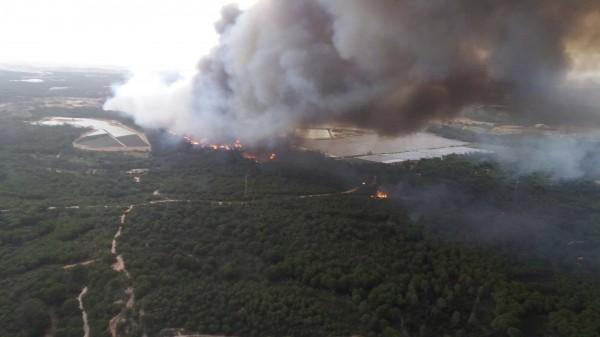 西班牙南部在當地時間週六(24日)晚間發生森林大火。(美聯社)
