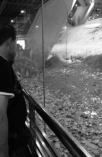 中國文物保護單位雷峰塔被民眾丟錢變成錢山。(圖擷取自微博)