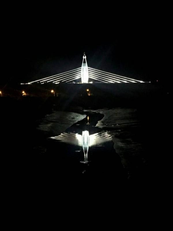 西濱快速道路王功段,設計一座水鳥意象的脊背橋,入夜光景耀眼奪目。(民眾莊倍豪提供)