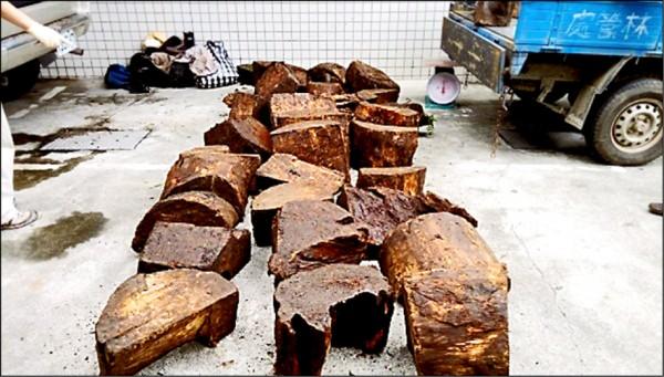 樹瘤經名師雕琢可能飆破百萬,但法官警告,竊取珍貴林木最高可處10年6個月有期徒刑。(記者蔡彰盛翻攝)