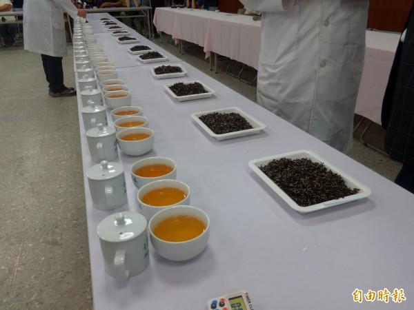 新竹縣東方美人茶(膨風茶)優良茶比賽,是全台最具代表性的東方美人茶賽,但特等獎茶茶價年年攀升。(記者廖雪茹攝)