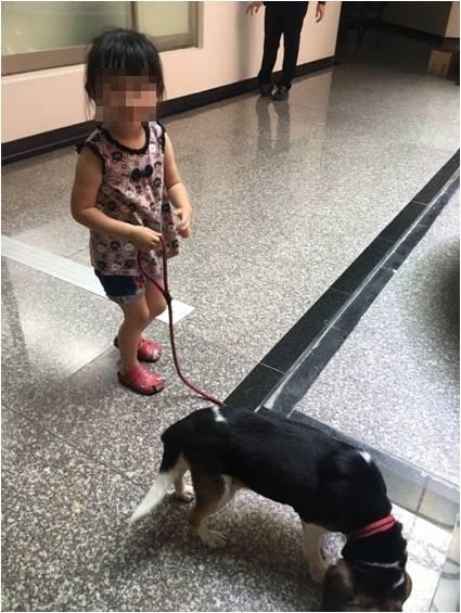 3歲女童因為在自家門口跟狗玩,就跟著狗一起走到街上,被警方帶回派出所,順利回到家人懷抱。(記者劉曉欣翻攝)