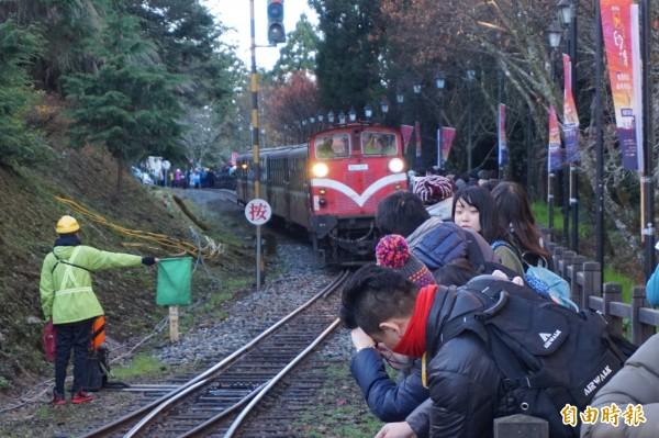 阿里山國家森林遊樂區今天傍晚5點半休園,森林鐵路支線配合停駛,圖為林鐵列車在森林園區行駛一景。(資料照,記者曾迺強攝)