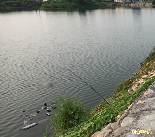 死者在池中立著,載浮載沉。(記者顏宏駿翻攝)(記者顏宏駿攝)
