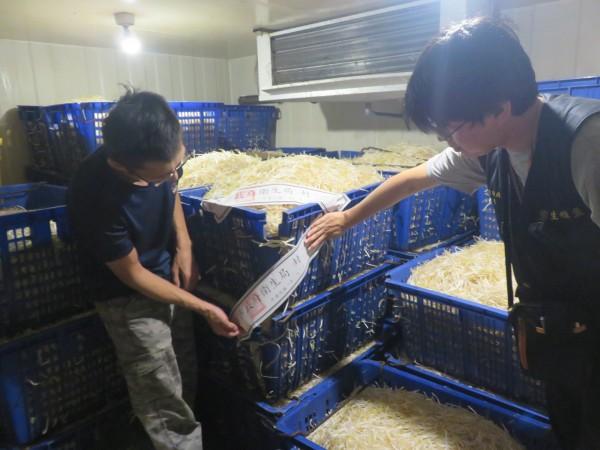 新北市衛生局查獲兩家豆芽菜製造廠違法添加漂白劑,現場共封存超過兩千公斤。(衛生局提供)