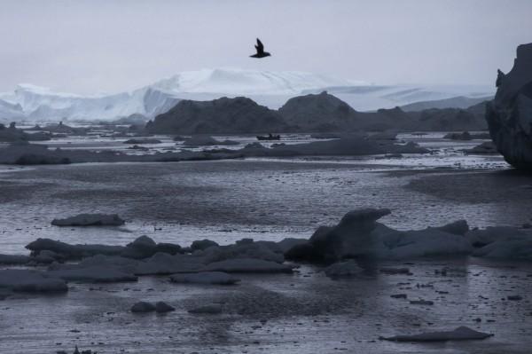 全球暖化嚴重,連北極也不冷了。(美聯社)