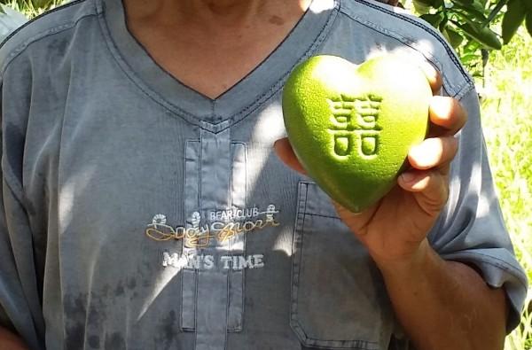 心型文旦柚外型討喜可愛。(新北市政府農業局提供)