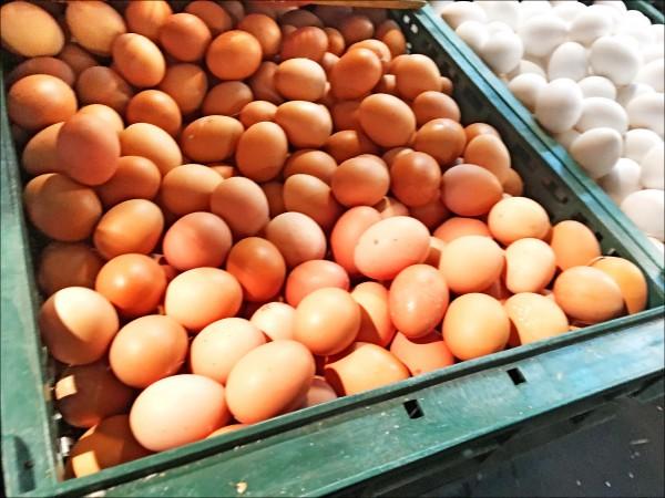 食藥署也會考慮擴大蛋品稽查,將餐飲業者使用的散蛋納入抽驗,確保品質,圖為市售散裝蛋。(資料照)
