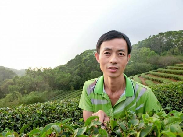 蘆竹區46歲茶農邱振平獲得產銷履歷達人,種茶、製茶已有30年資歷。(邱振平提供)