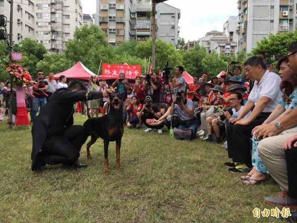 台北市長柯文哲今日出席士林商圈公益活動,活動現場安排15隻名犬走秀。(記者周彥妤攝)