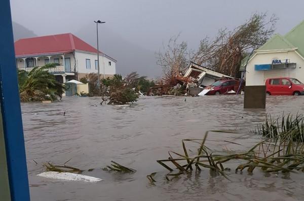 颶風艾瑪重創法屬聖馬丁島造成大淹水,樹木倒塌。(法新社)