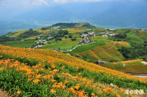 六十石山每到金針花季都會有美麗的金針花毯,吸引大批遊客前往。(資料照,記者花孟璟攝)