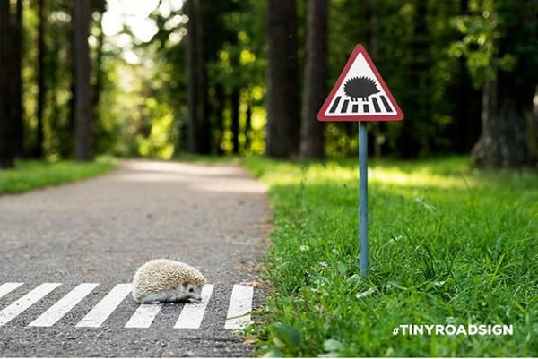 立陶宛的工作室Clinic212,發起活動在城市設立給動物的小路標,暖心的舉動讓網友融化。(圖片由Clinic212授權使用)