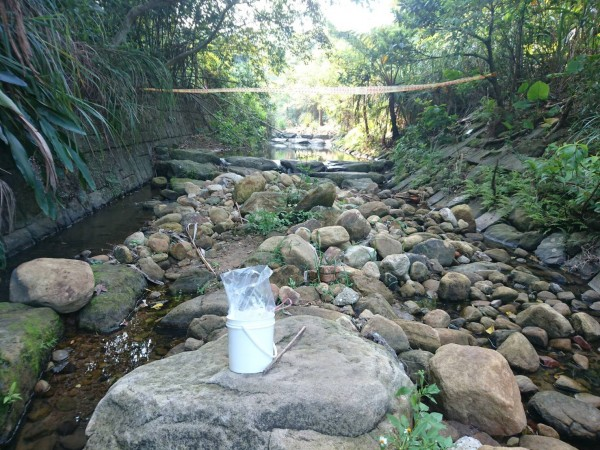 警方在男子落水處,發現1個裝有小魚、小蝦的白色水桶,一旁還有只簡易小漁網。(記者陳恩惠翻攝)