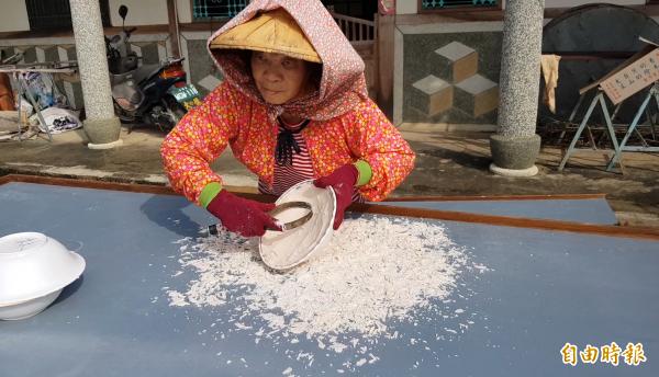 蓮藕粉產季開始,技藝傳承難見新血加入,在日曬藕粉壯觀場面,依舊僅見老農展現純熟手藝,用心延續藕粉的美好滋味。(記者王涵平攝)