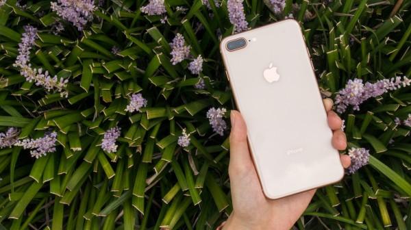 iPhone 8的玻璃材質與透過7層上色工序製作而成的全新金色外觀,舒適手感與優雅質感兼具。(記者黃筱晴攝)