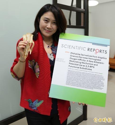 王家蓁研究證實當歸具有調節並提升血液輸送氧氣的功效。(記者洪定宏攝)