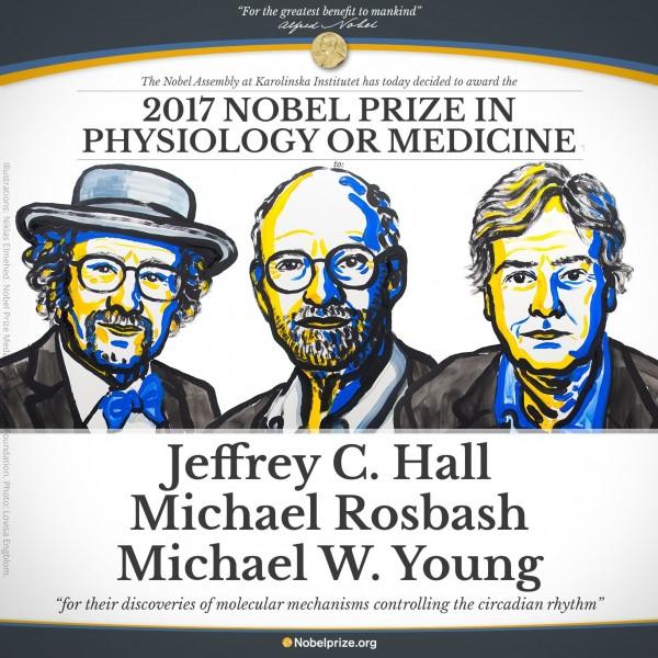 今年生理醫學獎桂冠由美國學者Jeffrey C. Hall、Michael Rosbash和Michael W. Young獲得,獲獎原因為「發現控制晝夜節律的分子機制」。(圖取自推特)