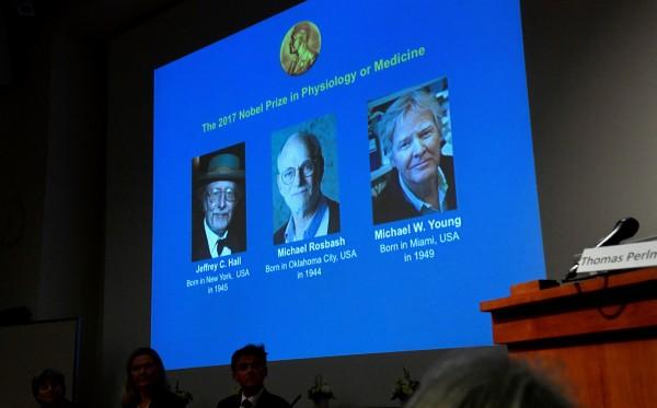 諾貝爾醫學獎委員會宣布,今年生理醫學獎桂冠由美國學者Jeffrey C. Hall、Michael Rosbash和Michael W. Young獲得。(路透)