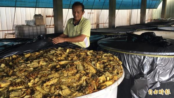 雲林縣二崙農產生物科技生產合作社理事主席廖金柱花了5年成功研發鳳梨酵素清潔液,且其鳳梨酵素劑體結構還獲得專利。(記者黃淑莉攝)
