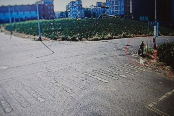 王姓婦人放置有毒豬皮的畫面,被路口監視器錄下。(記者曾迺強翻攝)