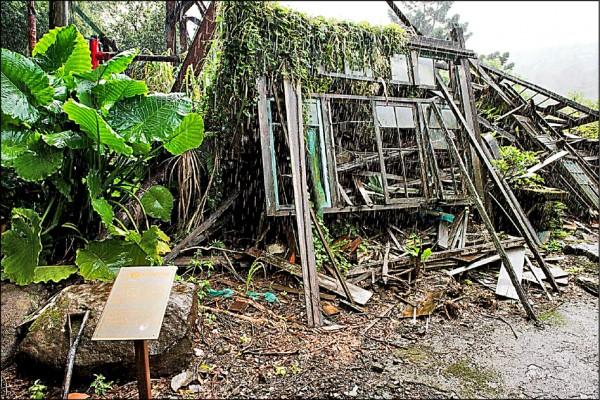 北市議員何志偉會勘草山御賓館,日式木造屋已頹圮呈荒廢狀態,20年來無人管。(北市議員何志偉辦公室提供)