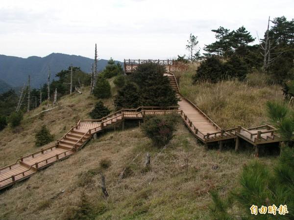 林務局新竹林區管理處表示,觀霧國家森林遊樂區今(14日)起全面預警性休園,請遊客暫勿前往。(記者廖雪茹攝)