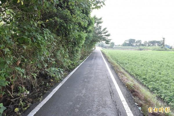 斗南市永安街通往東外環一段約1公里長道路路寬僅2.5米,經常發生車輛會車時滑落邊坡意外。(記者黃淑莉攝)