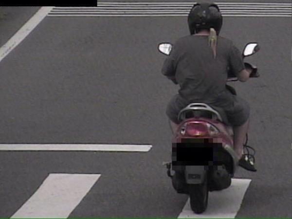 張嫌肩上站鸚鵡騎車逃離的特徵太好認,被警方過濾路口監視器揪出。(記者許國楨翻攝)
