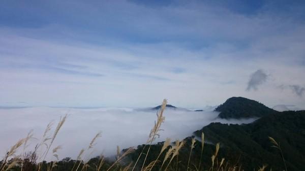 太平山雲海也是美不勝收。(圖由太平山翠峰山屋提供)