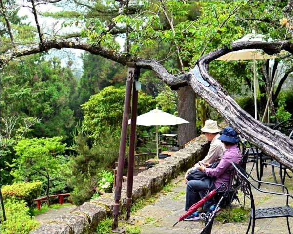 ▲台灣社會目前常見老人照顧老人的情形;圖為情境照。(照片提供/蘇宜家)