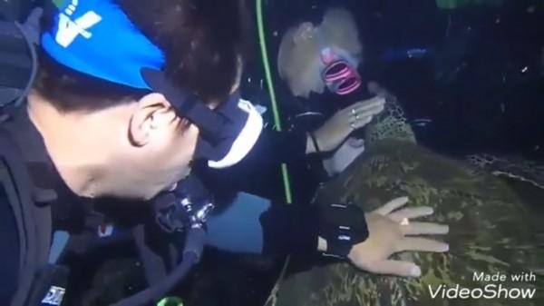 有一群潛水客日前前往小琉球潛水時,竟在過程中不斷觸摸、騷擾海龜。(圖擷自靠北潛水臉書)